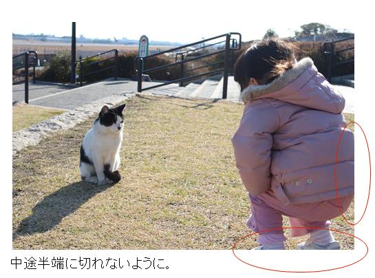 子供と猫の写真指摘