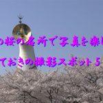 2015年 大阪の桜の名所で写真を楽しもう!  とっておきの撮影スポット5選。