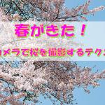 春がきた! 一眼カメラで桜を撮影するテクニック