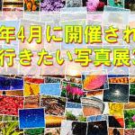 2015年4月に開催される、ぜひ行きたい写真展3選。
